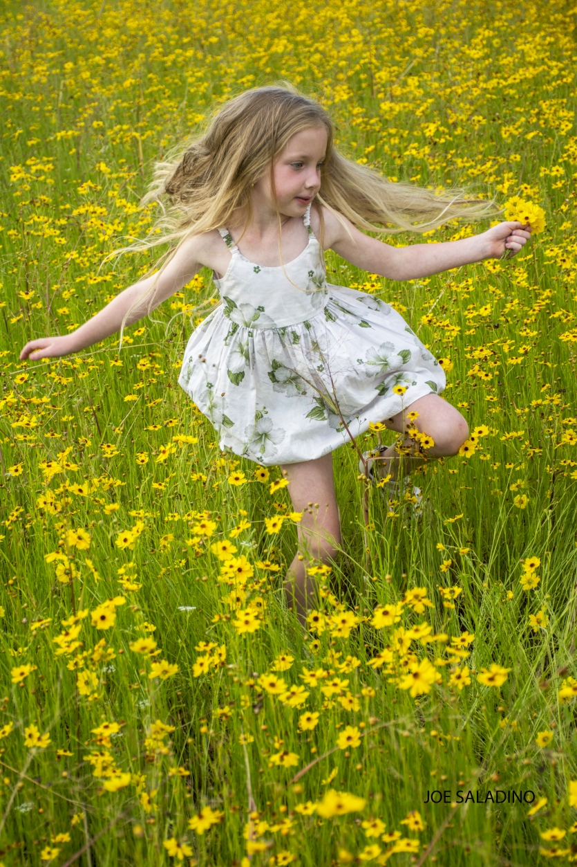 Running through the coreopsis