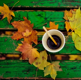 coffee and autumn
