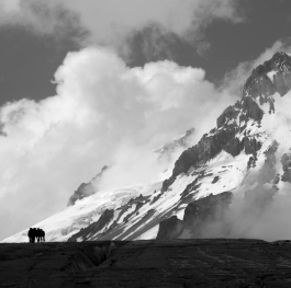 The horses and the mountain