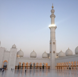 Sheikh Zayed Grand Mosque 8