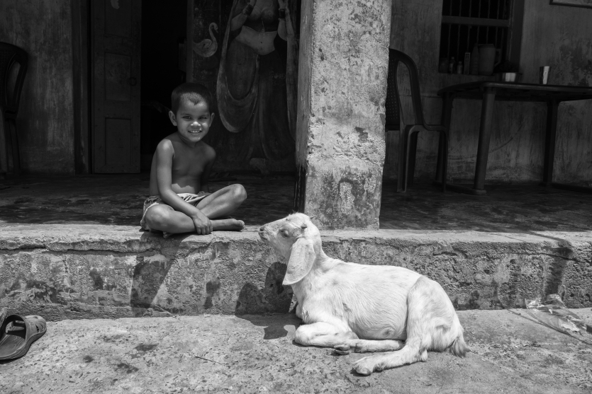 Child and her pet