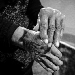 The Hands of My Beloved Grandmother