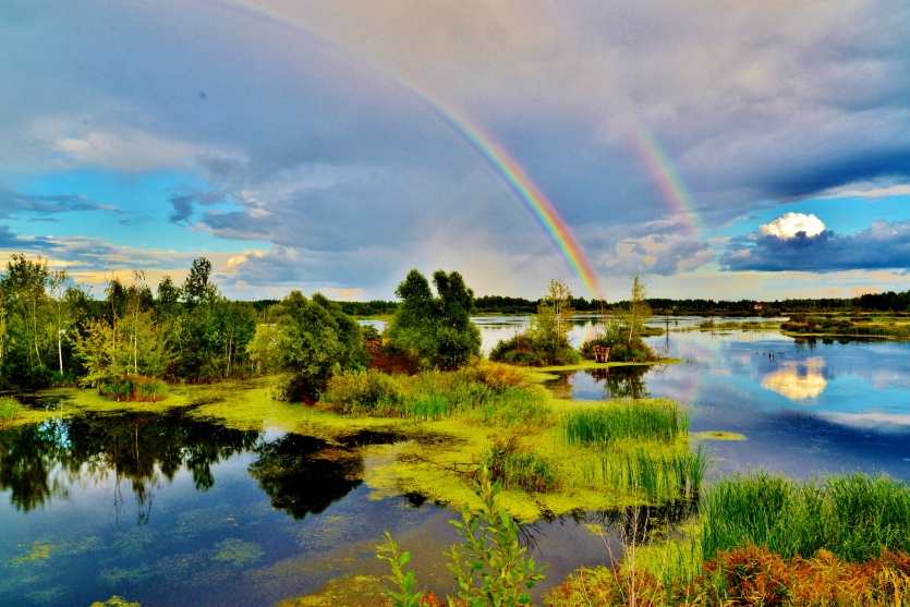 Rainbows. Moscow region.