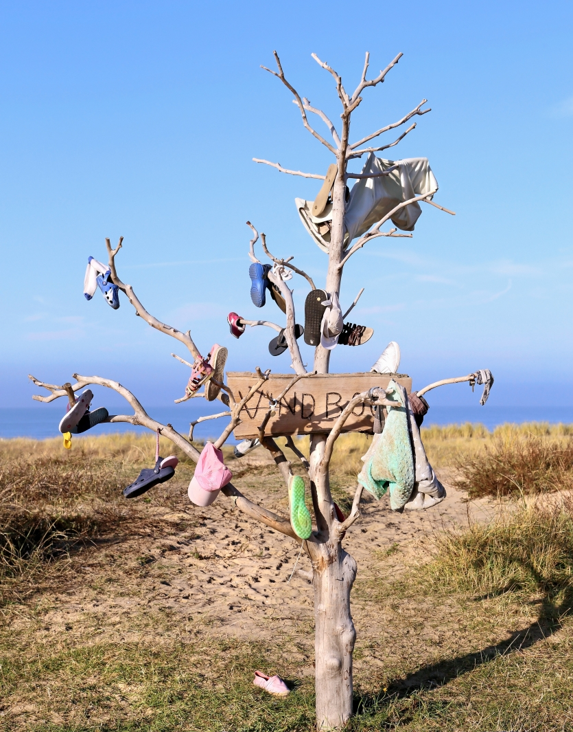 Tree for lost objects next to the beach in Noordwijk, The Netherlands