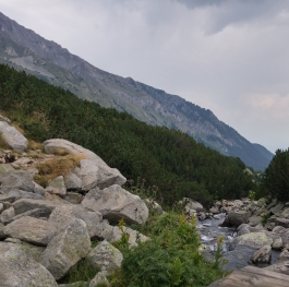 National park Pirin