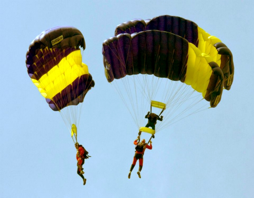 Parachutes flying in the sky