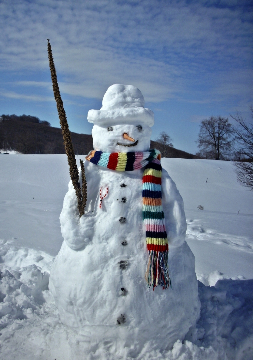 Best snowman with a hat
