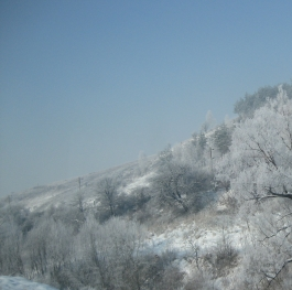 Winter magic in Bulgaria