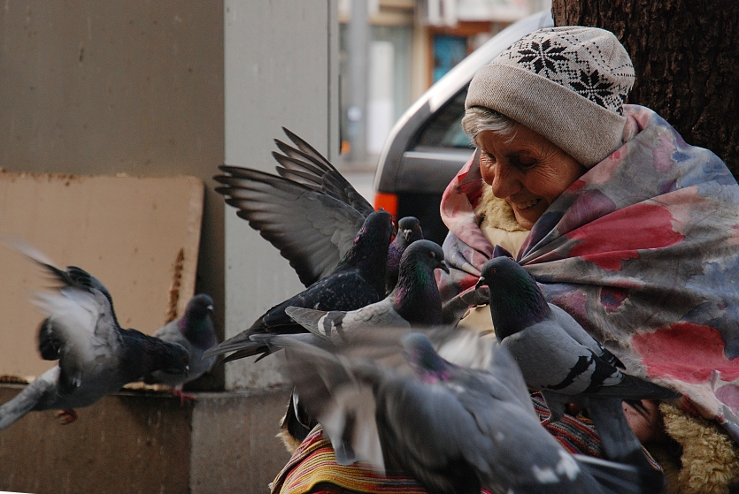 The women with pigeons