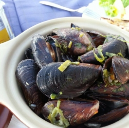 The mussel farm