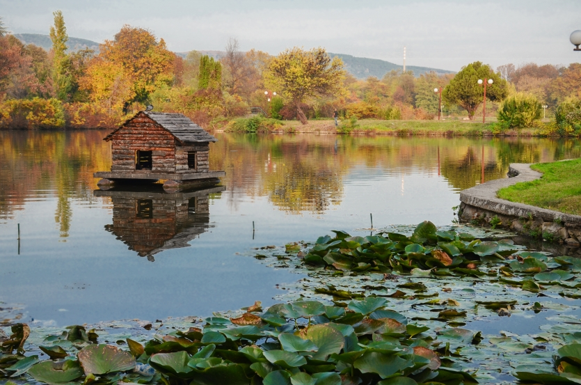Wooden house for waterfowls