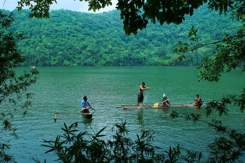 Life in the Woods in Bulusan Lake