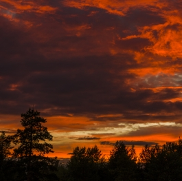 Conflagration of the Siberian sky