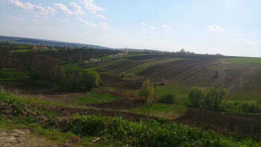 Romania's western country side