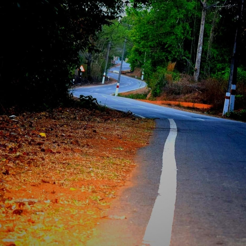 Snake curved road