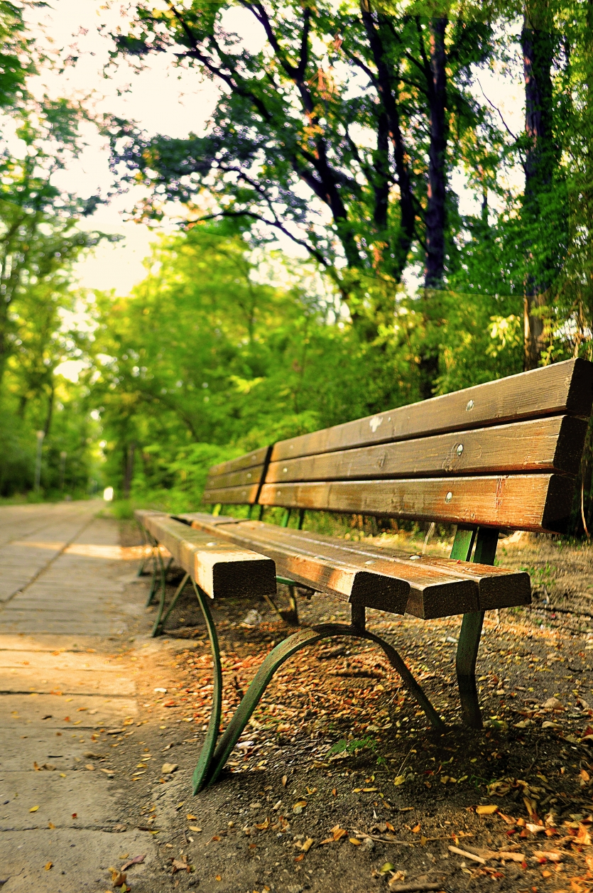 Bench for two