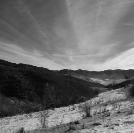 Winter Landscape - Rhodope Mountains