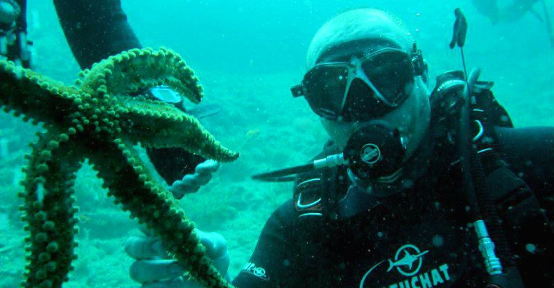 Diving on Thassos Island