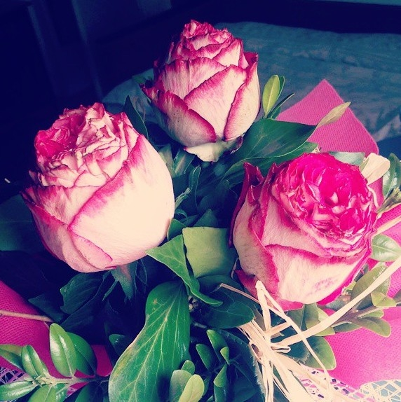 White Roses with Pink Textures