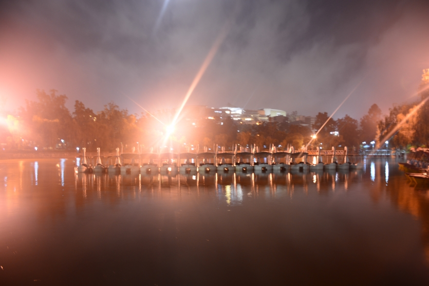 Burnham Lake at Night