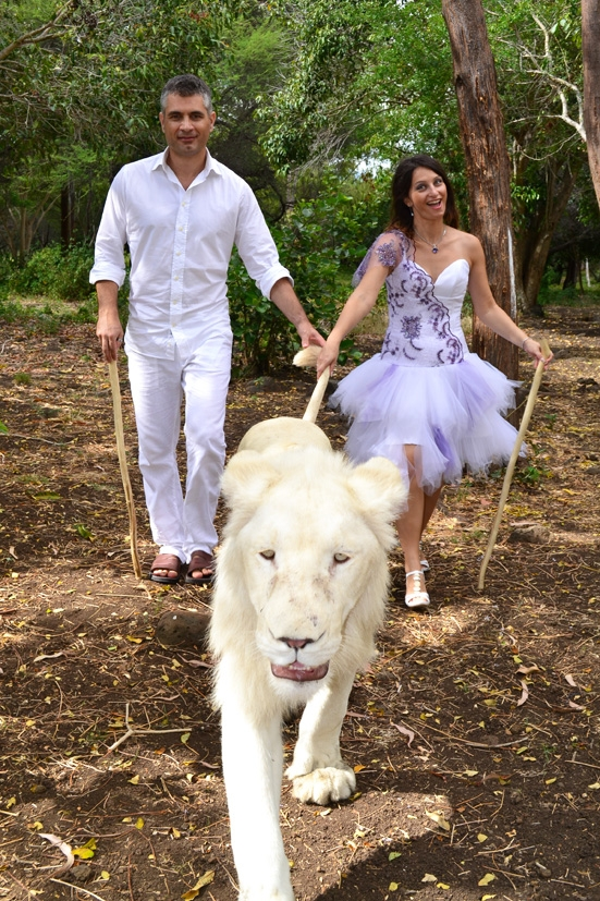 Our best man, the white lion! :)