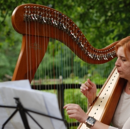 Harp playing in the nature