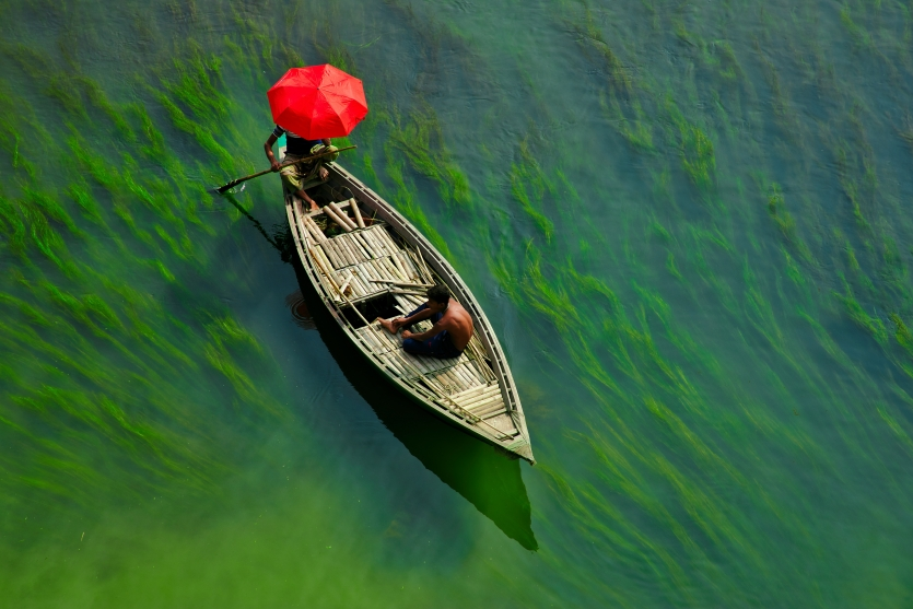 Boat on green river