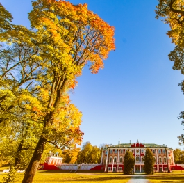 Bright autumn in Kadriorg