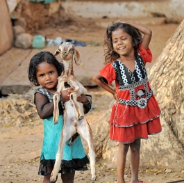 Girls with goat.