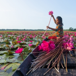 Water Lily Girl