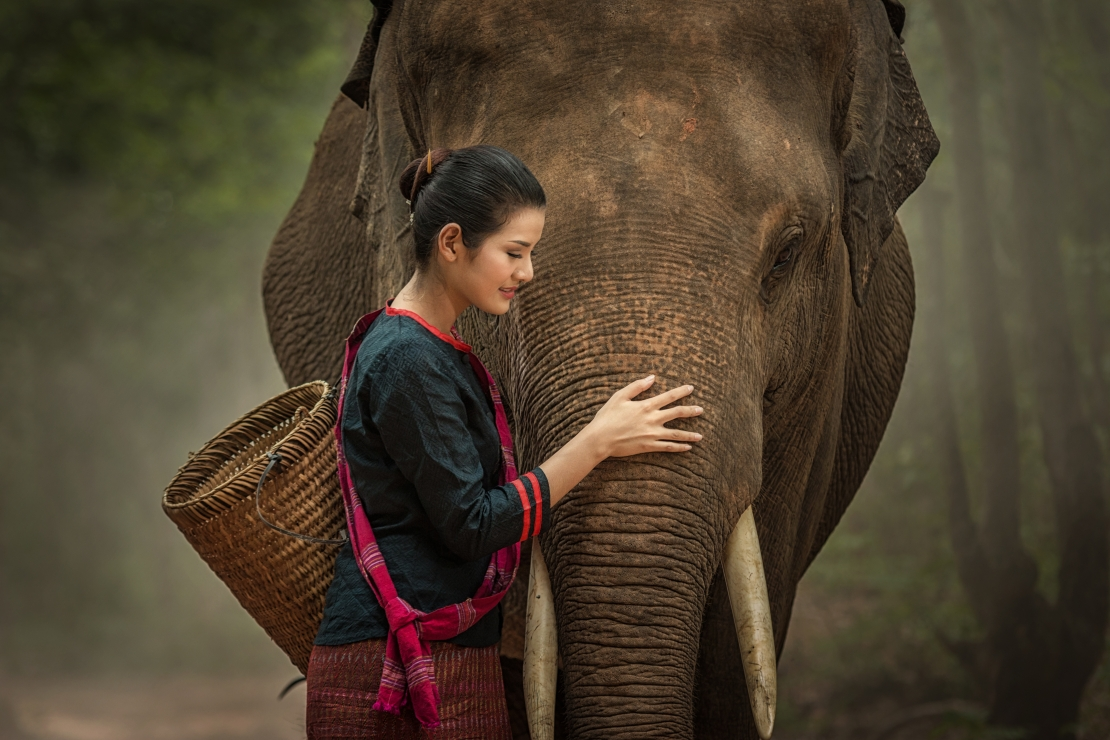 Girl with elephant.