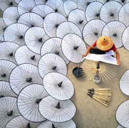 Traditional umbrella
