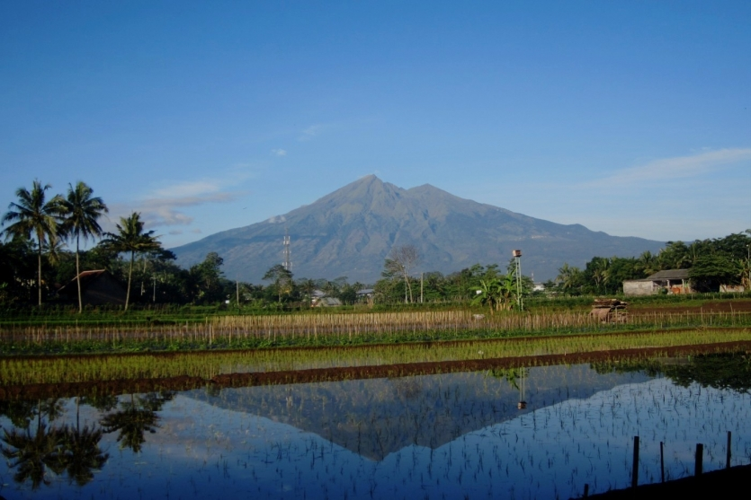 Almost Perfect Reflection of Mt. Merbabu