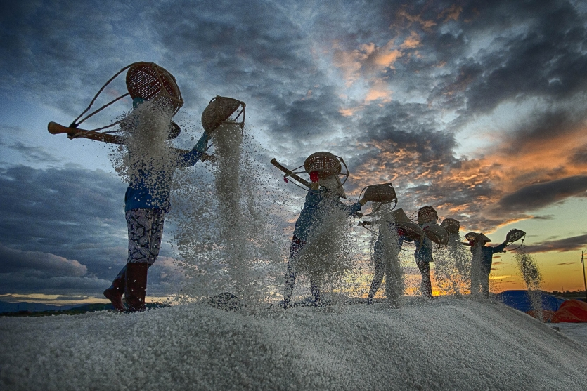 salt field worker