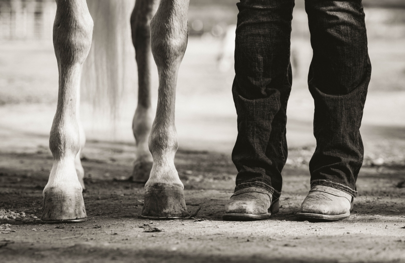 Boots & Hooves
