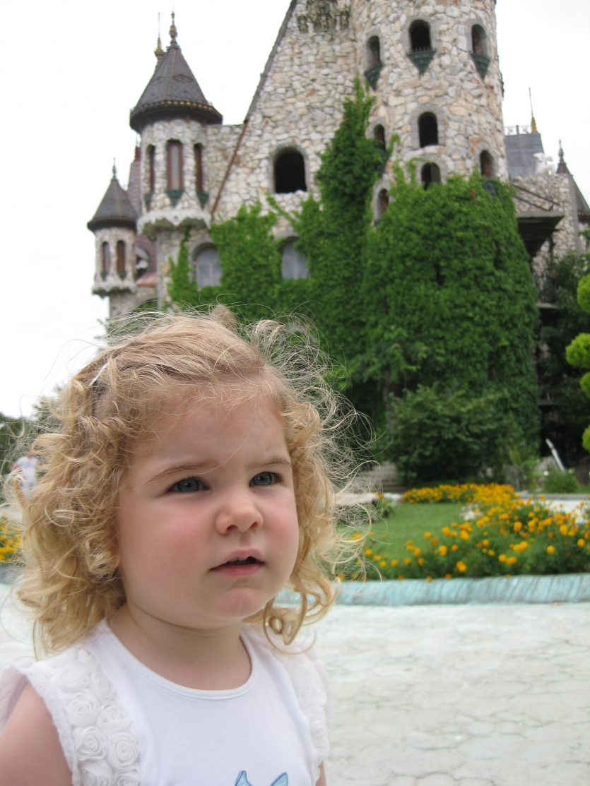 Princess in the Castle