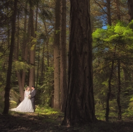 Love in forest