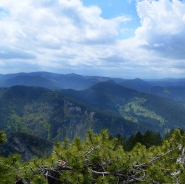 The Beauty of the Rhodope Mountain
