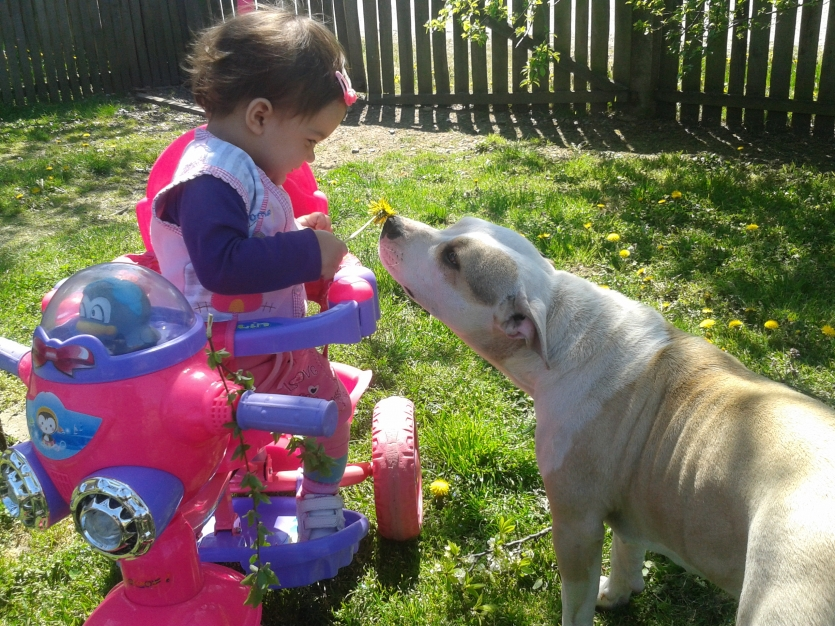 My 12 month daughter Djurdja and our dog Lea
