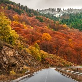 Autumn in Rodopy mountain