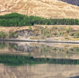 Scotland reflection 2
