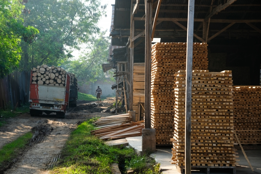 Wood Log Production