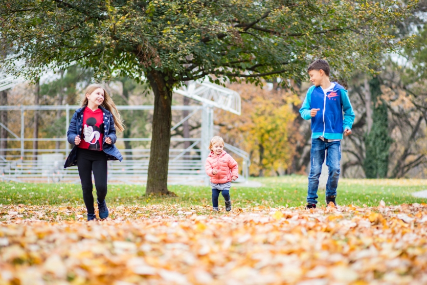 Autumn joy