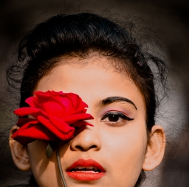 Beauti of Red Rose