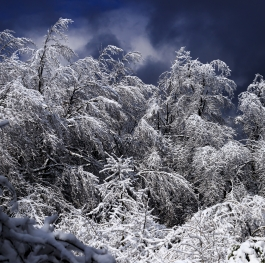 Winter view at Lozen Mountain, Bulgaria