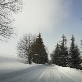 On the road to winter fairytail