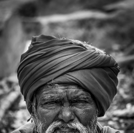 Portrait of a Old Man