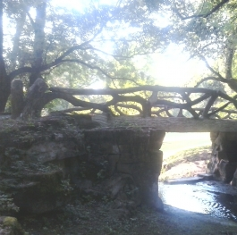 litlle bridge