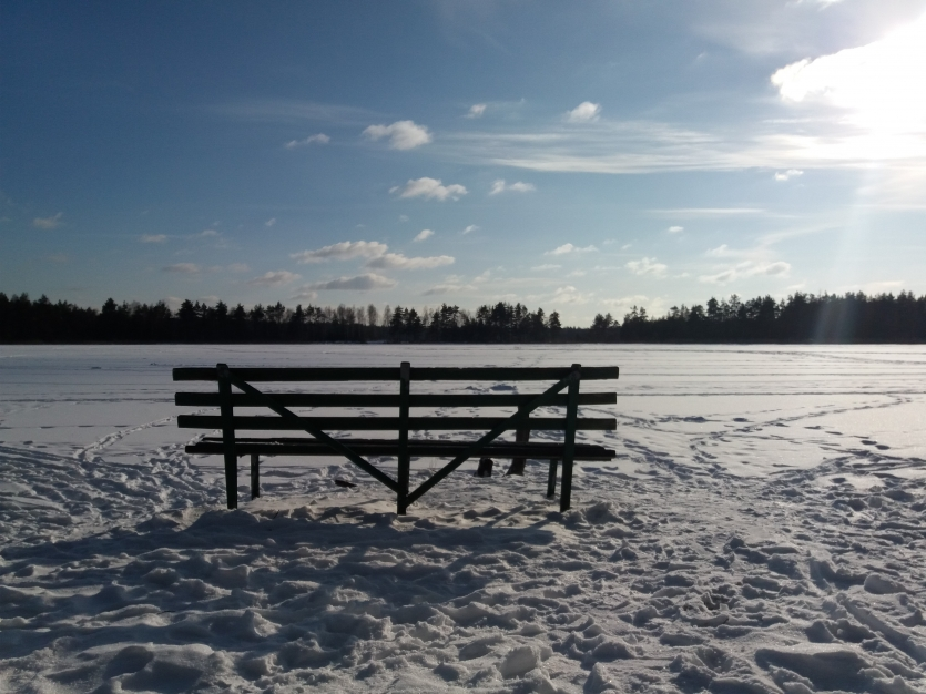 The beauty of the winter
