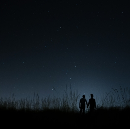 Lovely couple watching the night sky